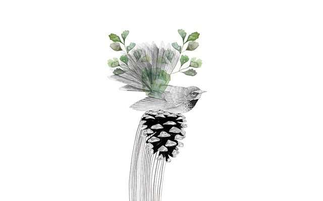 Beth Emily : птицы
