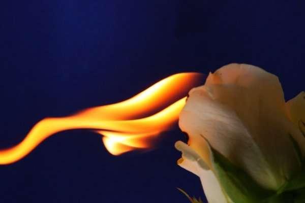 Огненное макро